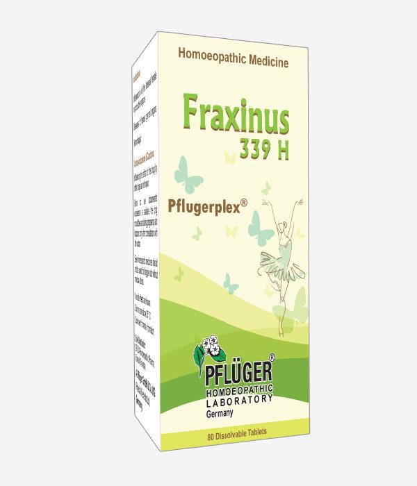 Fraxinus 339 H